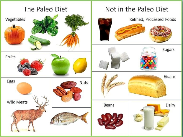Image source: http://positivemed.com/2012/12/06/the-paleo-diet/